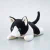 動物クリーナー(KCT-CAT5)