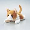 動物クリーナー(KCT-CAT6)