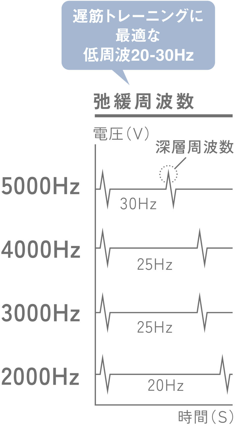 Low frequency 20-30Hz that is most suitable for slow muscle training