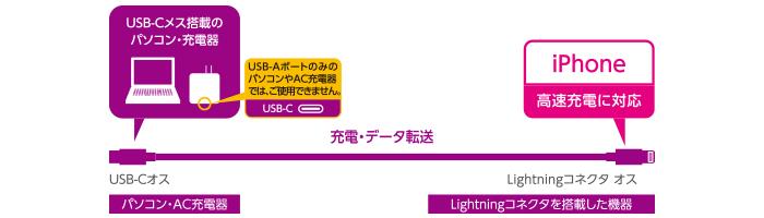 img 001 Cáp chuyển đổi TypeC sang Lightning MPA-CL10